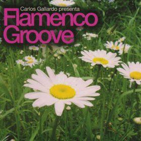 Flamenco Groove (1cd)