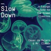 Slow Down 2016 (1CD)