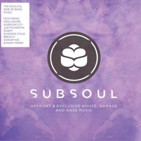 Subsoul 2013 (1CD)
